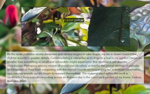 caterpillar_danielblinkhorn